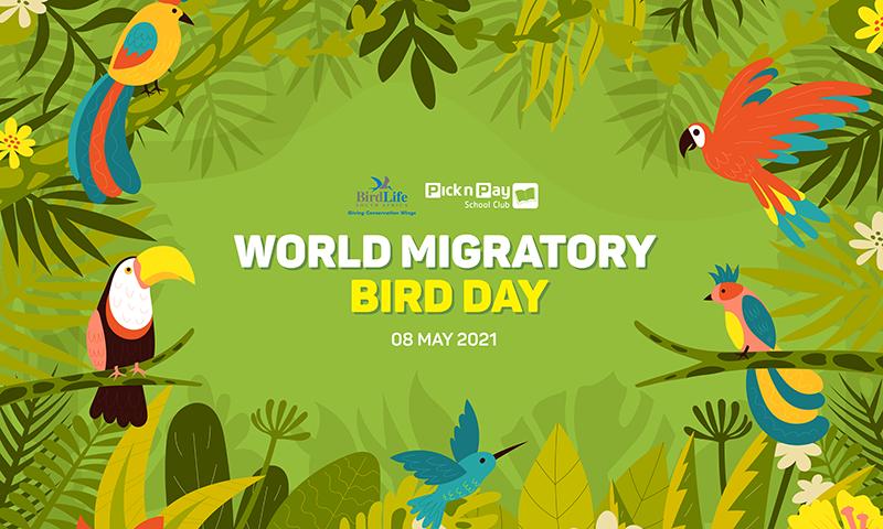 Global Birding Day